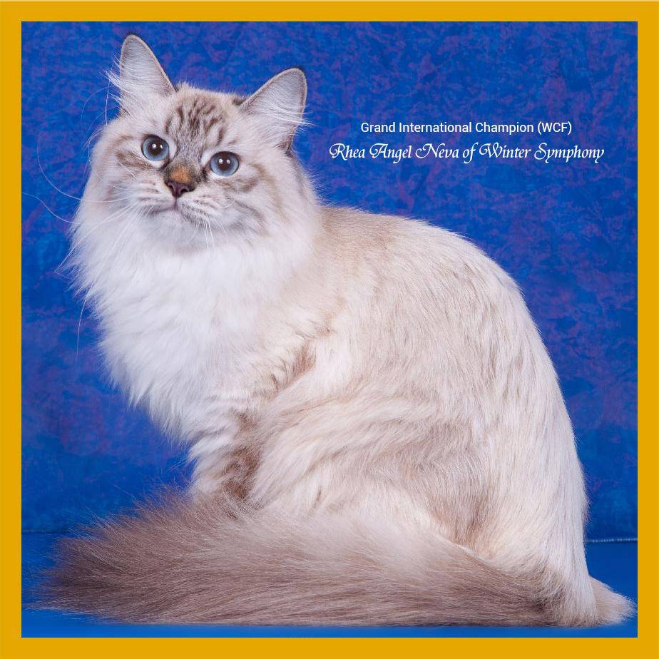 rhea-angel-neva-of-winter-symphony