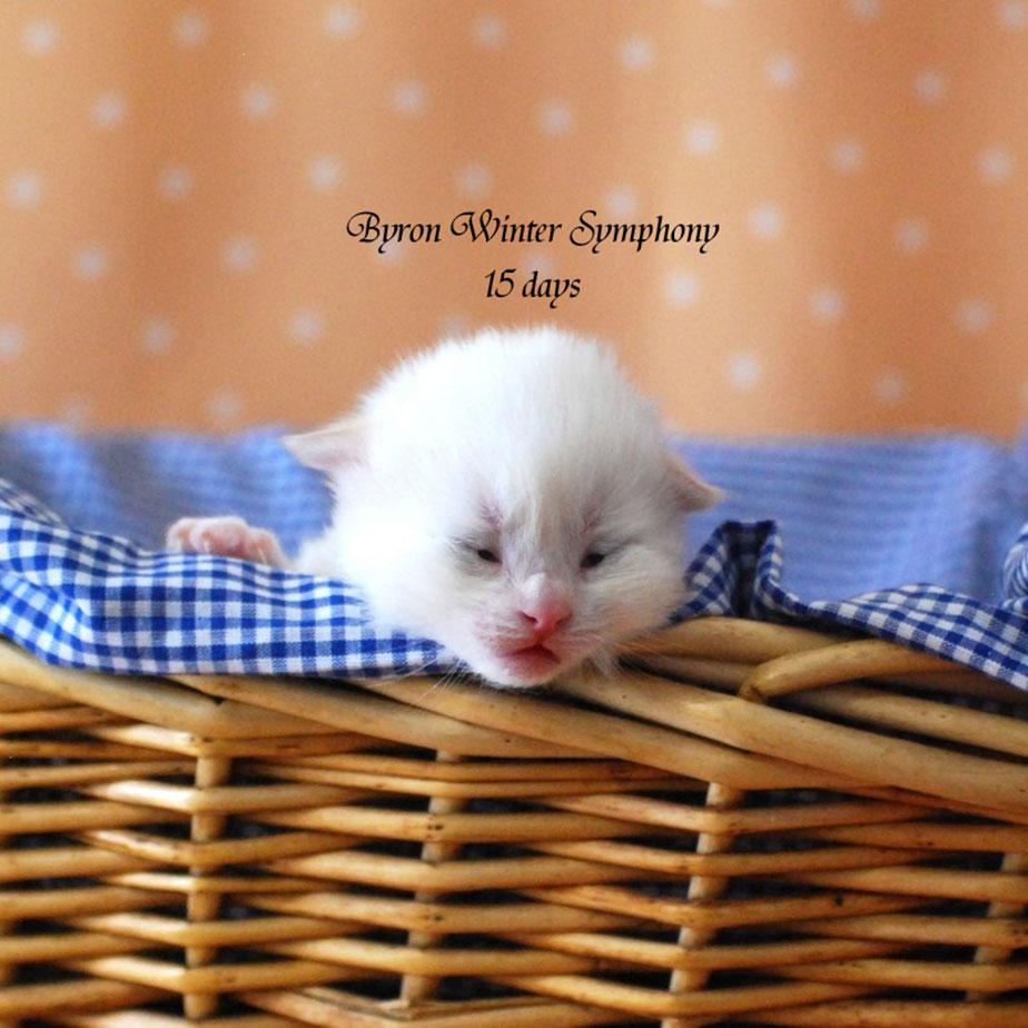 byron-winter-symphony